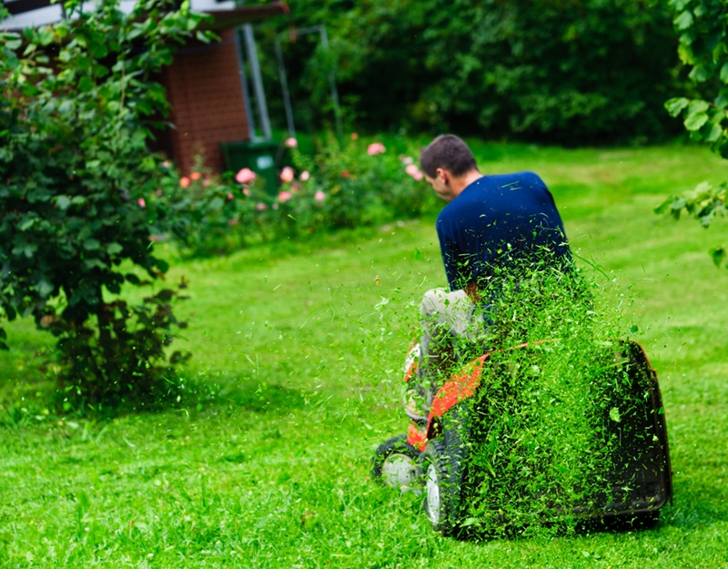 Ride-on mowers allow you to trim lawns on a whole different scale.